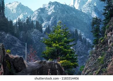 Kasol, Himachal Pradesh, India