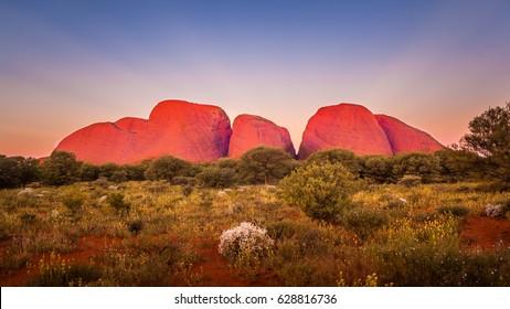 KATA TJUTA, AUSTRALIA - CIRCA AUGUST 2016: Kata Tjuta at dusk with clear winter sky, Uluru-Kata Tjuta National Park, Northern Territory, Australia