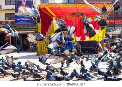 Kathmandu, Nepal - March 18, 2017, Feeding birds, with boy running and chasing group of pigeons.