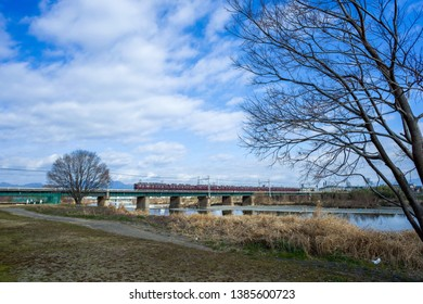 In the Katsura area on the Kyoto border of Japan, in the grassland next to Katsura River, through the railway bridge, a Keihan train passes, with a big tree next to it. Blue sky, sunny day
