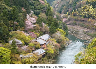 The Katsura River and cherry blossoms in Arashiyama, Kyoto, Japan.