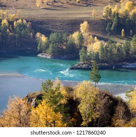 The Katun River in the Altai Mountains, sunny autumn day