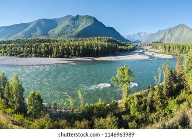 The Katun River flows in the Altai mountains, the summer sunny landscape