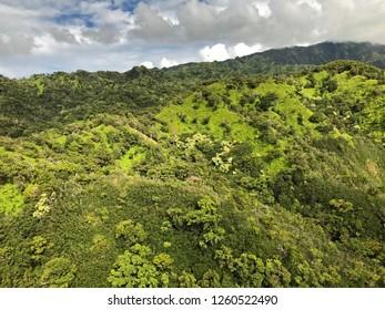 Kauai, Hawaii: aerial view of valley mountain