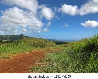 Kauai, Hawaii: dirt road runs through a mountain valley on a beautiful day