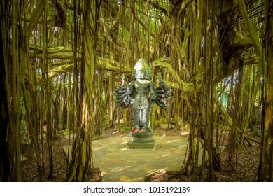 Kauai, Hawaii, February 12, 2016 - Lord Shanmuga is the deity of yoga, spiritual effort & healing. This hand carved statue is amongst a banyan tree at the Himalayan Academy at Kauai's Hindu monastery.