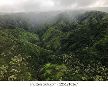 Kauai, Hawaii: foggy morning on a mountain valley