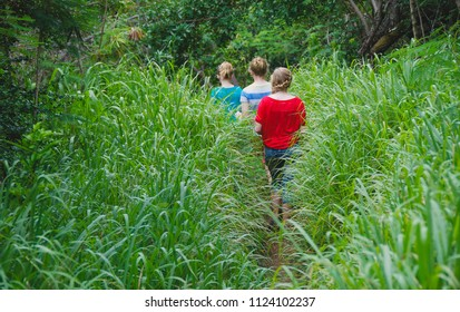 Kauai, Hawaii / USA - May 10th 2013: Three young woman hiking through grass in Hawaii