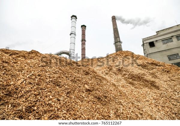 Kaunas Lithuania November 22 2017 Biomass Stock Photo (Edit Now