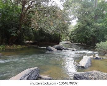 Kaveri River at Nisargadhama,Kushalnagar,Coorg.