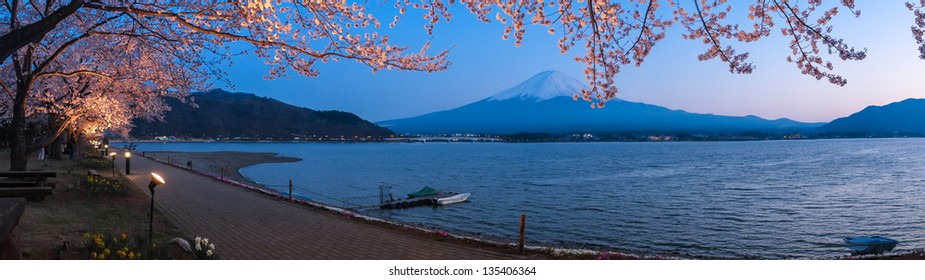 KAWAGUCHI, JAPAN - APR 13: Cherry blossom festival at lake Kawaguchi, April 13, 2013 in Japan. Viewing cherry blossom is a traditional Japanese custom. Kawaguchi is one of the best place to enjoy it.