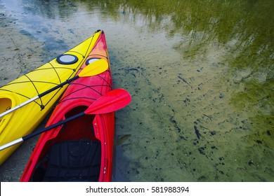 Kayak.