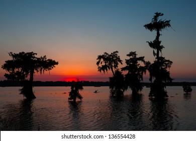 Kayaker Coming in at Sunset - Lake Martin in Breaux Bridge, Louisiana
