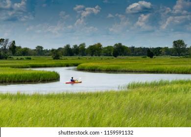 Kayaker in the Marshland