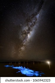 Kayaking in Bioluminescence under the Milky Way, Tasmania