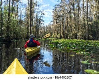 Kayaking couple in Okefenokee swamp in Georgia, USA.
