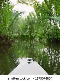 Kayaking Green Cathedral Kampot Cambodia