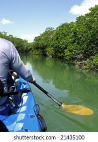 Kayaking in the mangroves in the Florida Keys