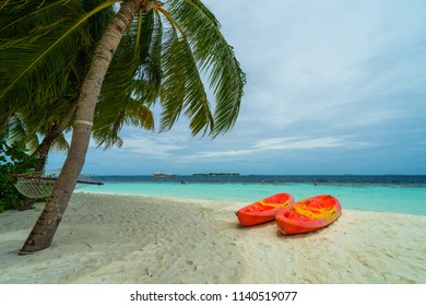 Kayaks on the beach with palm trees and blue sky