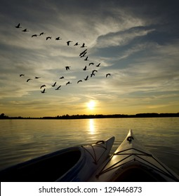 Kayaks on Lake Ontario at sunset with geese looking to landing on the water