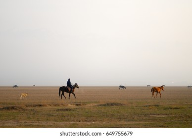 Kazakh shepherd on a horse with the dog