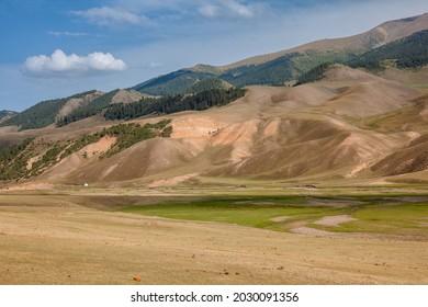 Kazakhstan, Almaty region, plateau Asy (Assy). Summer trip in wild nature of Almaty region.