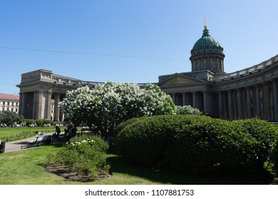 Kazan Cathedral. Saint Petersburg. Russian Federation. 2018 / 05 / 29. Warm day, green grass, and floweras of lilac.