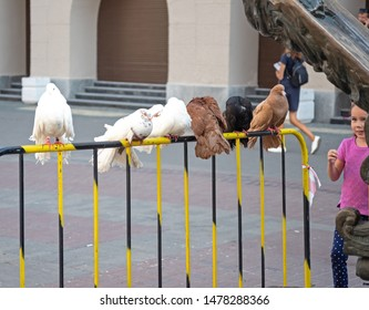 Kazan, Republic of Tatarstan, Russia - July 19, 2019. Bauman street, pedestrian street, favorite place for tourists and visitors to walk.  Pigeons in the foreground.