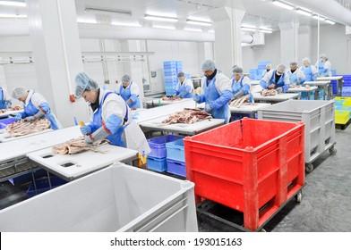 Kazatin, UKRAINE-September 15, 2010: cutting meat slaughterhouse workers in the refrigerator, September 15, 2010 in a meat factory, Kazatin, Ukraine