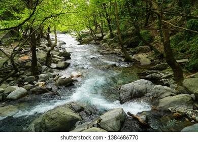 Kazdagi (Mount Ida) National Park is in the district of Edremit, in Balikesir province of Turkey. View of  Hasan Boguldu (Sutuven) waterfall  in the park.