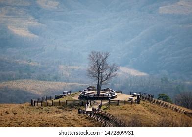 K-Drama Beethoven Virus Shoting Location at Daegwallyeong Samyang Ranch