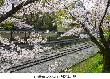 Keage incline, Kyoto, Japan, in the spring with cherry blossoms.