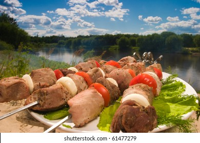 kebab with tomato and pommels on the plate at the river