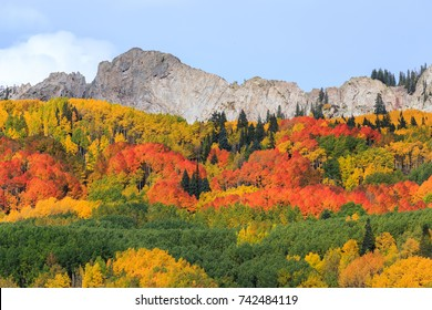 Kebler Pass - Autumn colors create a unique scenic beauty in the Rocky Mountains of Colorado.