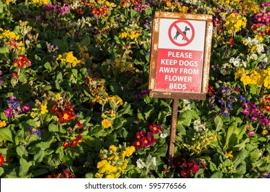 Keep dogs away from flower bed sign in a public garden