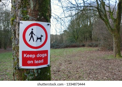 Keep dogs on lead warning sign on the tree in the park. Focus on the red & white sign, one side of frame with space to add own text on the other side, blurry grass field, trees branches in background.