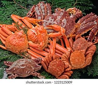 Ke-gani (hairy crab), Taraba-gani (red king crab), Zuwai-gani (red snow crab)