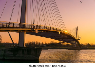 KEHL, GERMANY - MARCH 24, 2018: The cable-stayed modern Mimram footbridge built in 2004 over the Rhine river connecting the cities of Kehl, Germany, and Strasbourg, France at dusk.