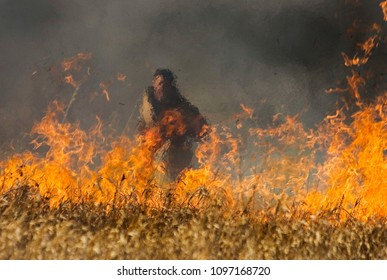 Kelowna, British Columbia/Canada - April 18, 2008: The silhouette of a firefighter can be seen through the smoke and haze of a forest fire in British Columbia, Canada