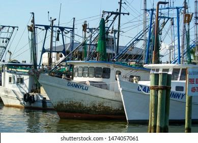 Gulf Shrimps Images, Stock Photos & Vectors | Shutterstock