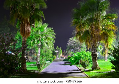 KEMER, ANTALYA, TURKEY - SEPTEMBER 26, 2017: Long exposure night photo of the grand haber hotel park alley with a lot of green palm trees, bushes and grass in a bright street light.
