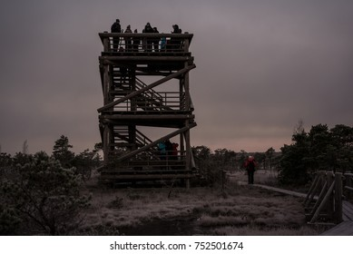 Kemeri, Latvia - October 22, 2017: people waiting for the sunrise on watchtower in Kemeri national park on cold early winter morning.