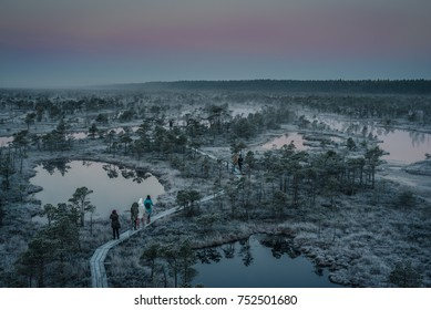 Kemeri, Latvia - October 22, 2017: aerial view of people walking on wooden road in bog of Kemeri national park at dawn in winter with frozen trees and grass.
