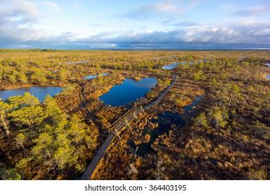 Kemeri swamp landscape in Latvia