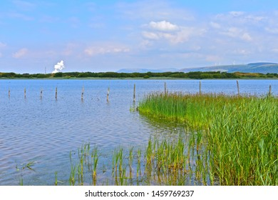 Kenfig, Bridgend County Borough / Wales UK - 7/14/2019: A tranquil view over Kenfig Pool, a National Nature Reserve in Wales. Steam rising from Port Talbot steelworks in distance.