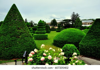 Kennett Square, Pennsylvania - June 3, 2015:  Clipped taxus (yew) trees in the Topiary Garden at Longwood Gardens   *