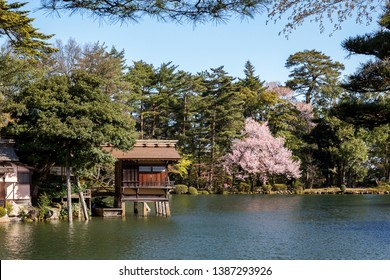 Kenroku-en during spring early in the morning