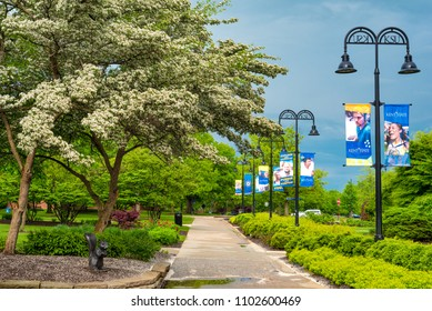 KENT, OH - MAY 21, 2018: Flowering trees, garden landscaping, and themed posters enhance a walkway near the library on the campus of Kent State University in Northeast Ohio.