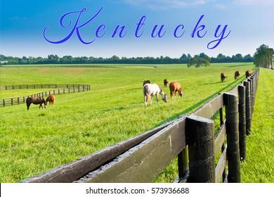 Kentucky card. Countryside landscape.