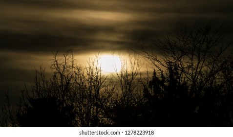 Kentucky golden sunset in winter with surrounding silhouette of barren trees